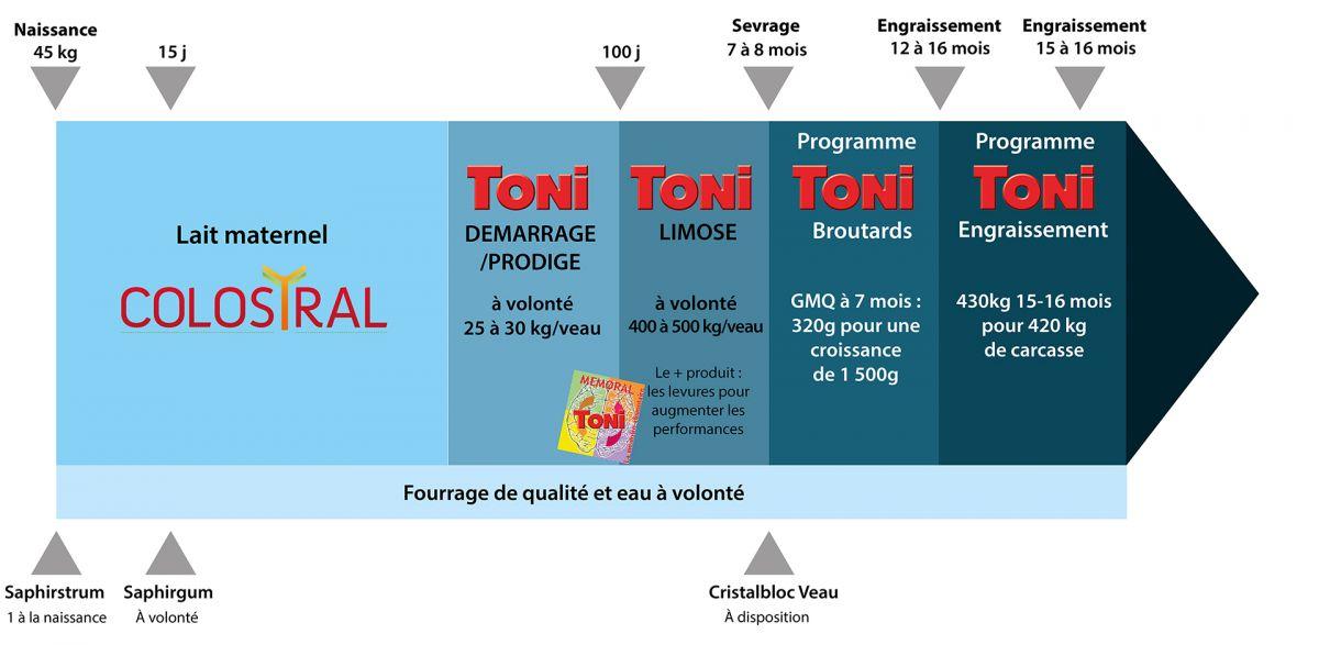schema_toni_demarrage.jpg