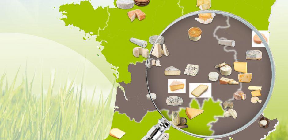 Production de fromages AOP